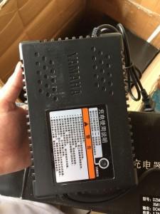 Sạc Yamaha 48v 12Ah